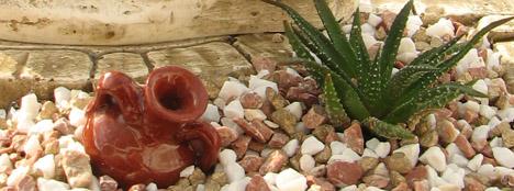 Kaktusbyen